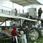 Sunagro • Registro de empresas del sector agroalimentario